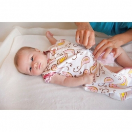 Спальный мешок для новорожденного SwaddleDesigns zzZipMe Sack 6-12M Flannel PP Elephant & Chickies