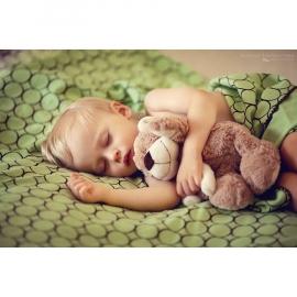 Фланелевая пеленка для новорожденного SwaddleDesigns Lime w/BR Mod C
