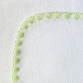 Фланелевая пеленка Organic IV w/Kiwi Trim